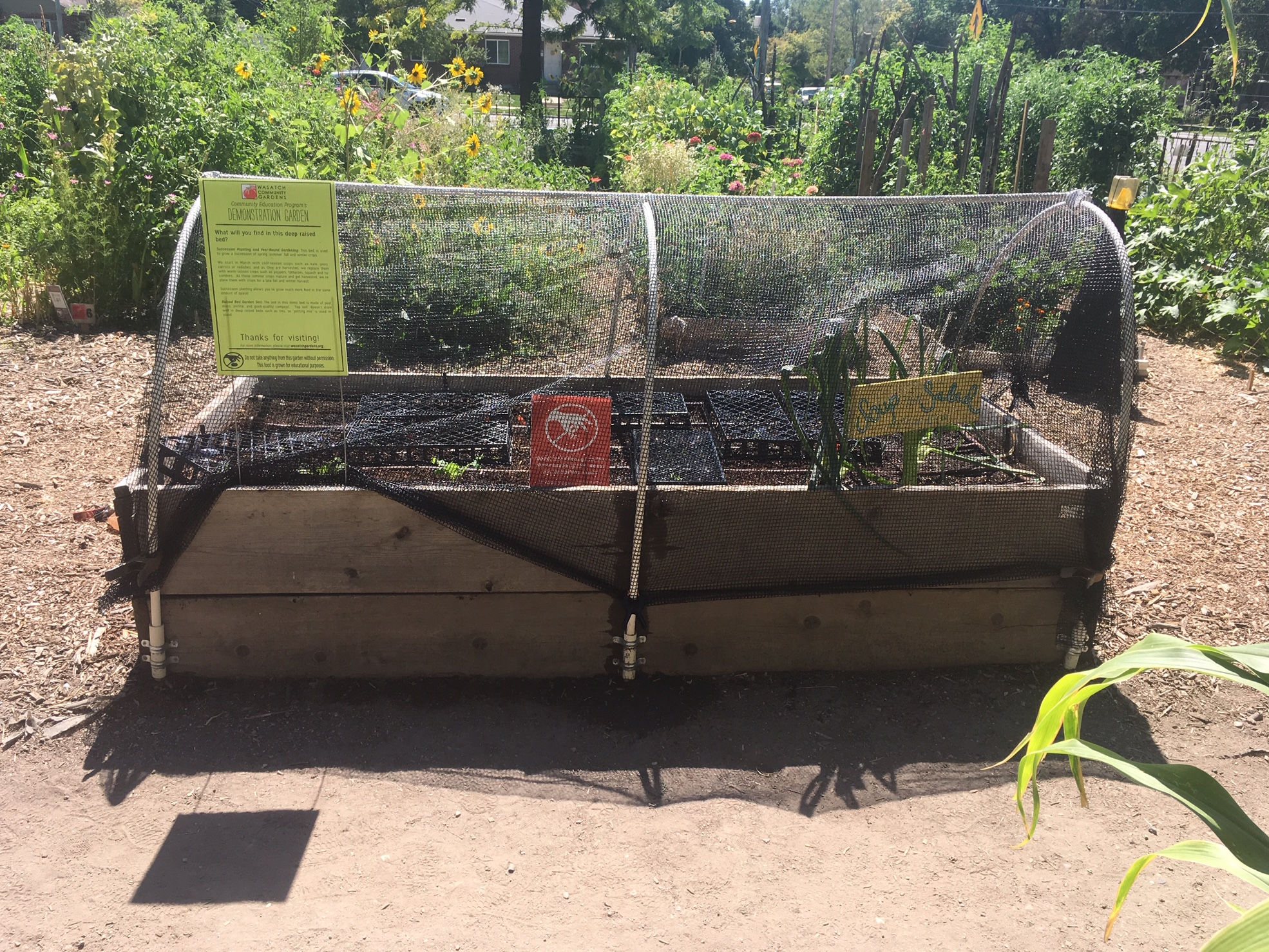 Hoop House with shade cloth