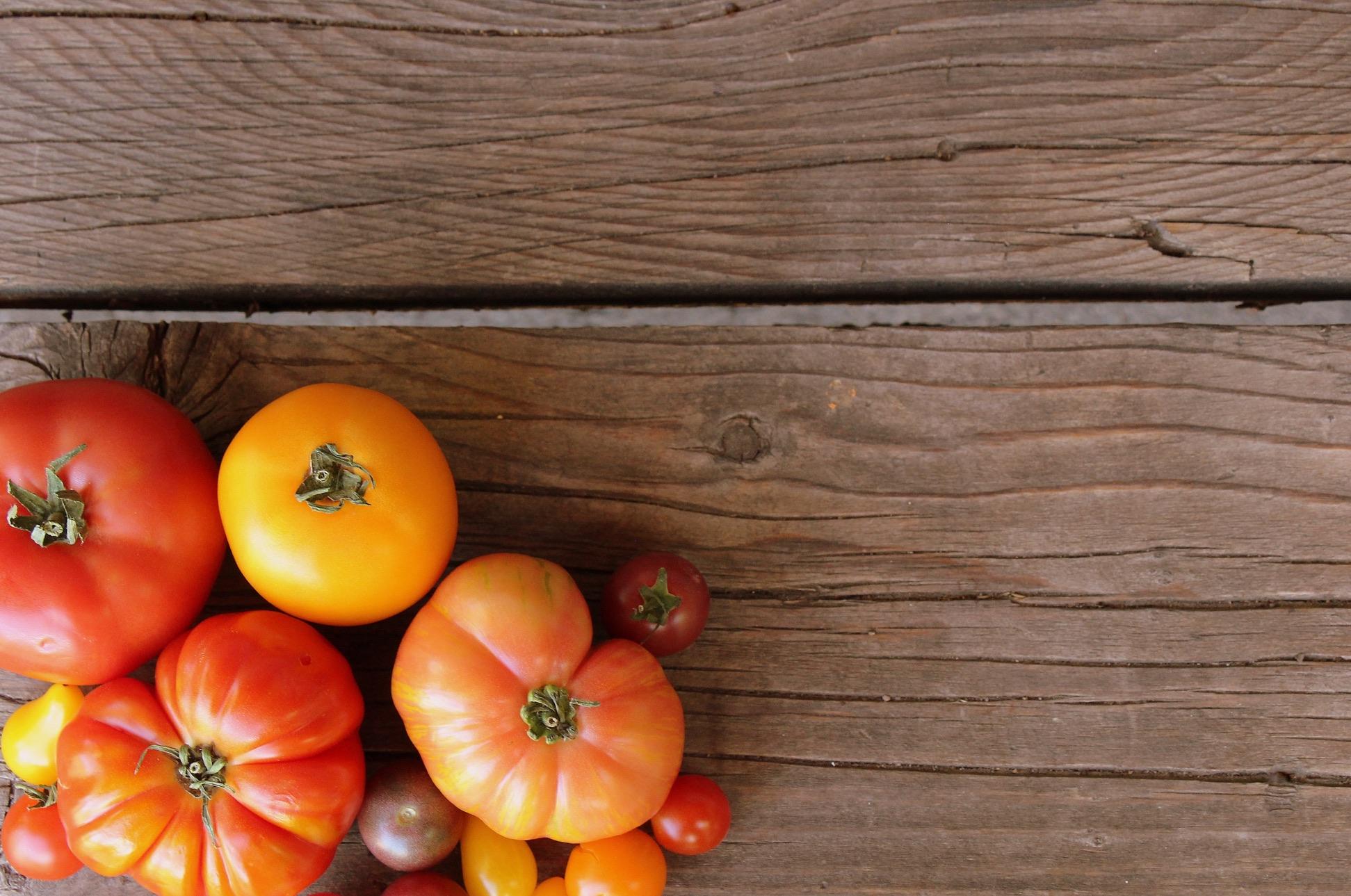 Tomatoes-3_resized