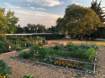 Sugar House Park Community Garden