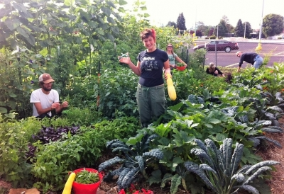 Fairpark Community Garden