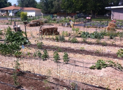 Historic Sandy Community Garden