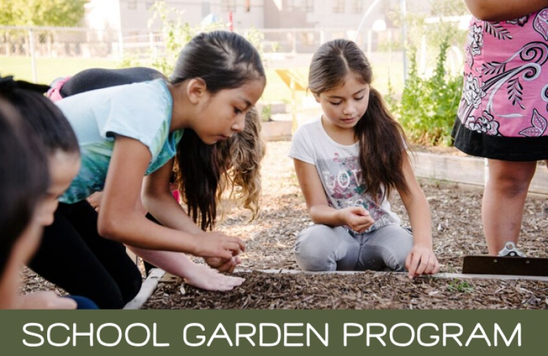 Garden Curriculum